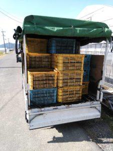 トラックの荷台に積み込んだ堆肥